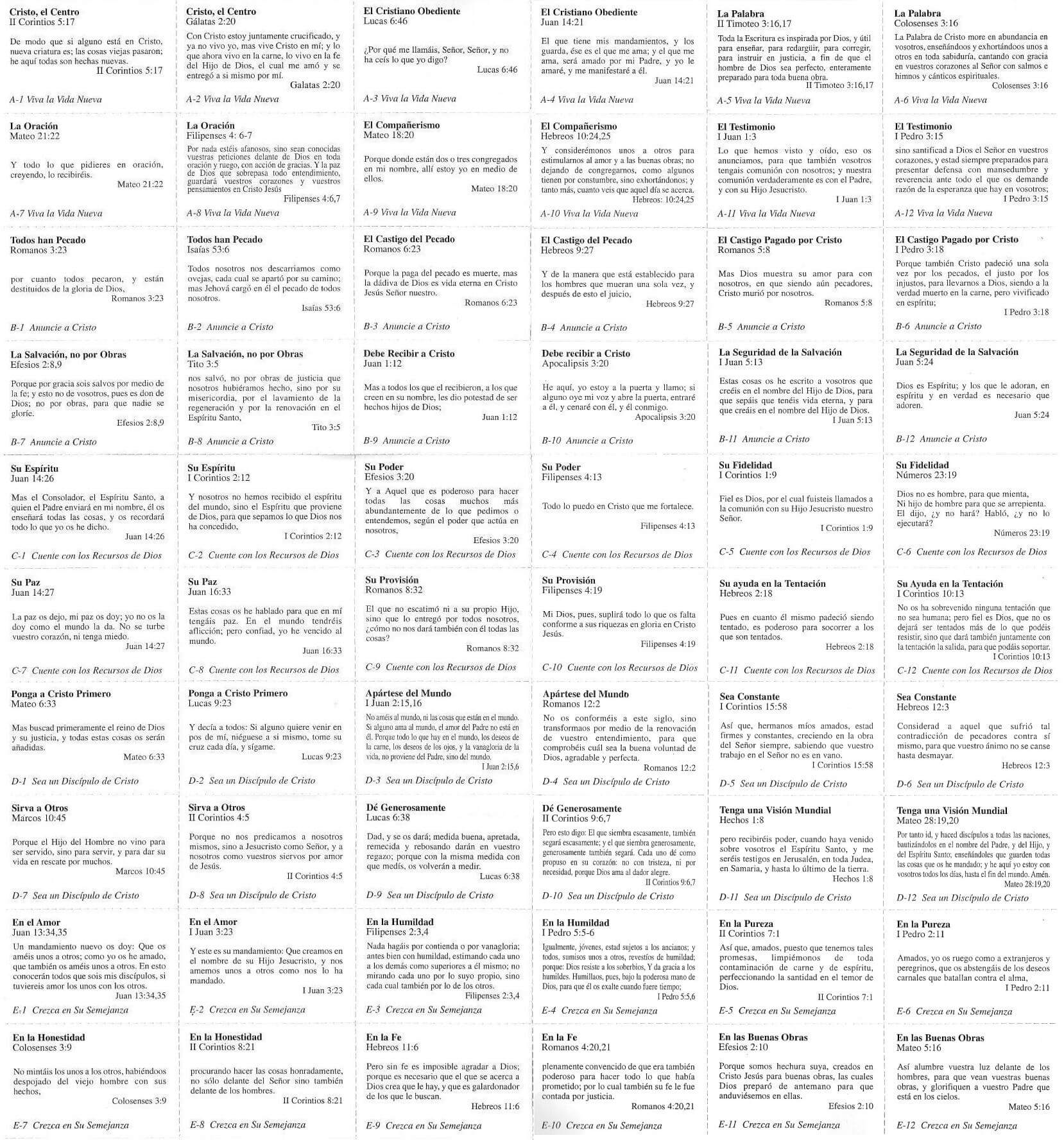 materialdiscipulado-pliegue1
